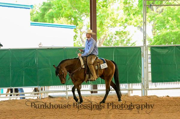 Ranch Horse Pleasure ~ FRIDAY