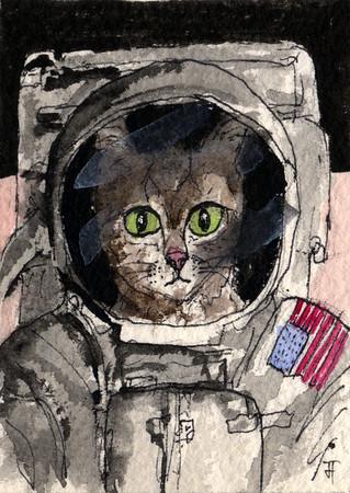 Catstronaut.jpg