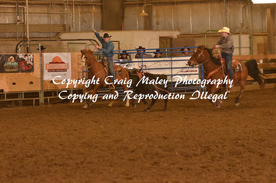 Team Roping Short Go