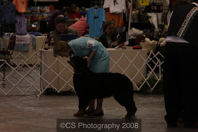 Puppy Dog 6-9 mos-BMDCA 2009