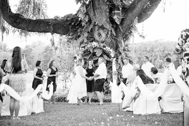 D&T Ceremony (34 of 151).jpg