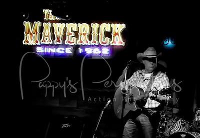 Southern Reins - The Maverick