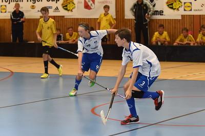 2014-09-06 Töjnan Cup