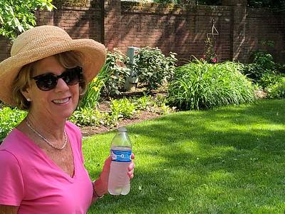 Melanie Dowell's Pop-Up Garden