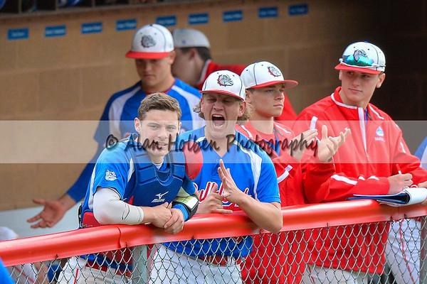 Varsity Baseball - Dewitt at Mason