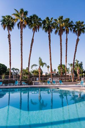 20XX - 2016 Palm Springs Area