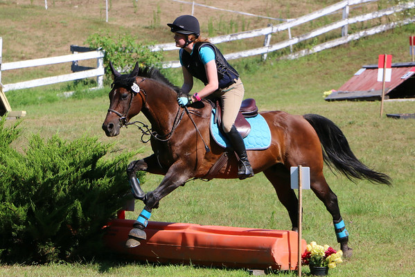 Horsepower Farm 2016