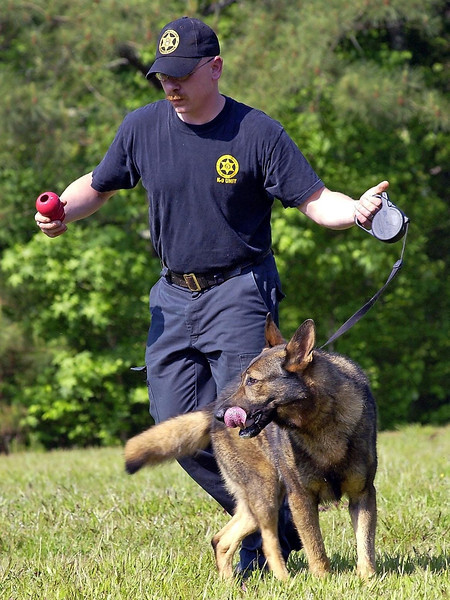 "D.C.S.O and D.C.P.D  K9 ""Training Course"""
