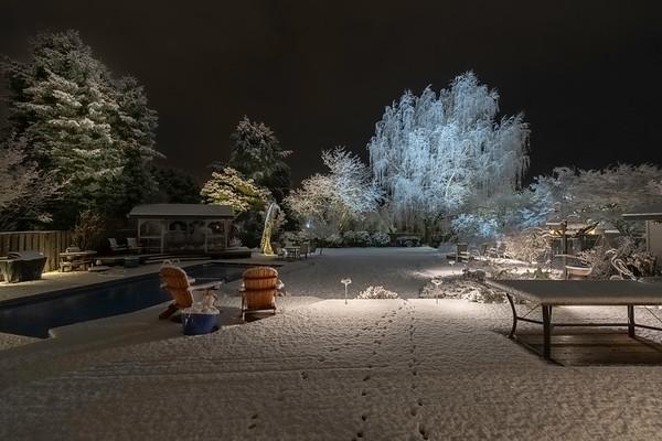 "2019 03-09 2"" of Snow"
