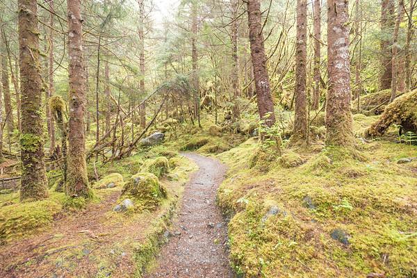 East Glacier Trail