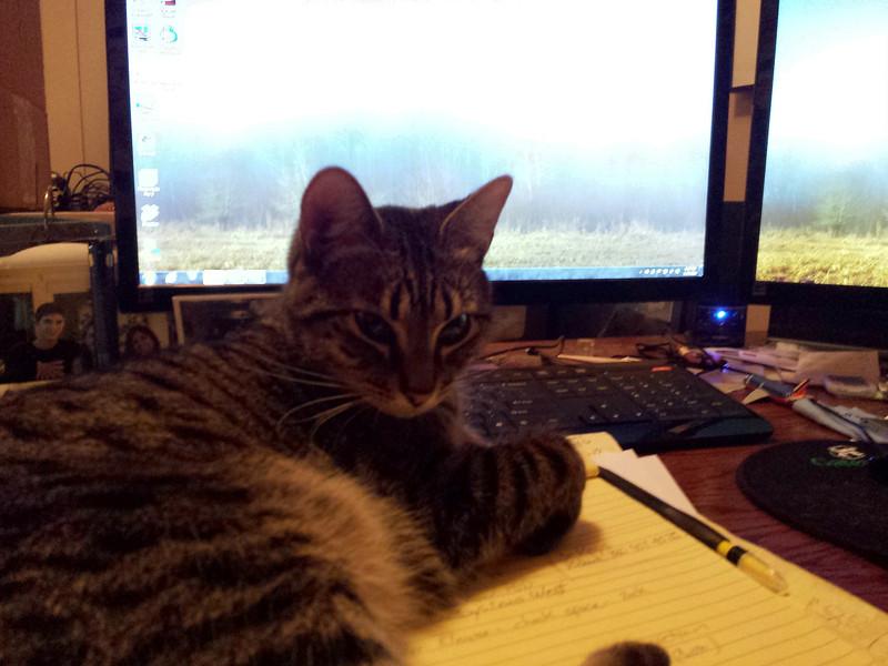 Isabel making it hard to do my work!