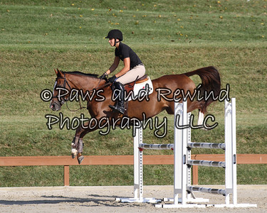 Grand Prix Ring:  Medium Schooling Jumper (Friday)