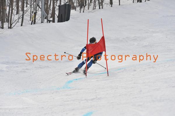 OFSAA Alpine Level I GS