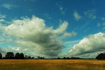 Savannah - Big Skies - 001