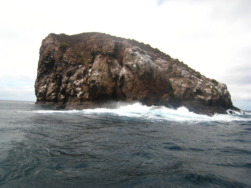 Diving in the Galapagos (258 of 392)