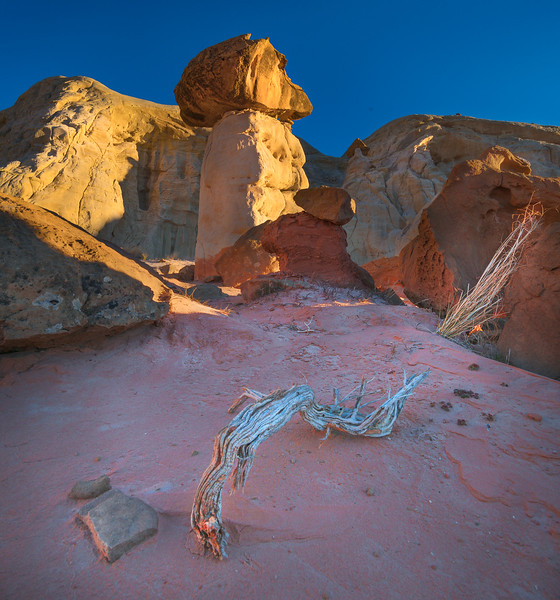 Desert Scape.jpg