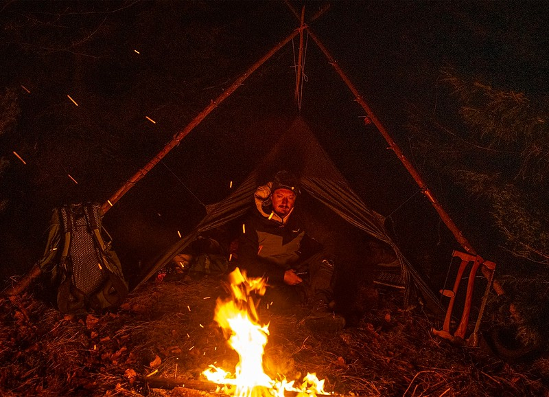 la foc in padure-01.jpeg