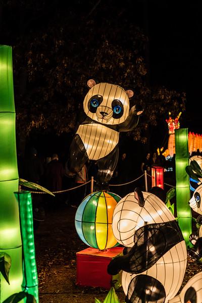 Chinese Lantern Festival-5286.jpg
