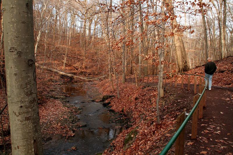 Lorimer Park Walk 044.jpg