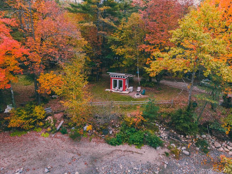 Fall Foliage 2018-11.jpg