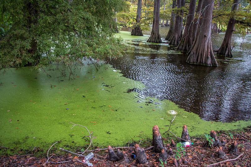 October 10 -Indianola_ Mississippi.jpg