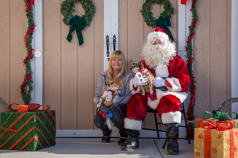 Pet Pictures With Santa-55.jpg