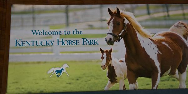 Kentucky Road Trip - The Horse Park