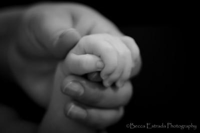 Babies and Bumps Portfolio
