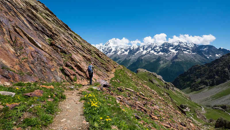 Loetschental July 2014 - Loetschental July 2014-15-July - 3819.jpg