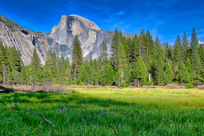 Meadow Half Dome View Aur PS_DSC6065_HDR.jpg