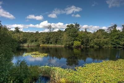 Lake Wood 2020