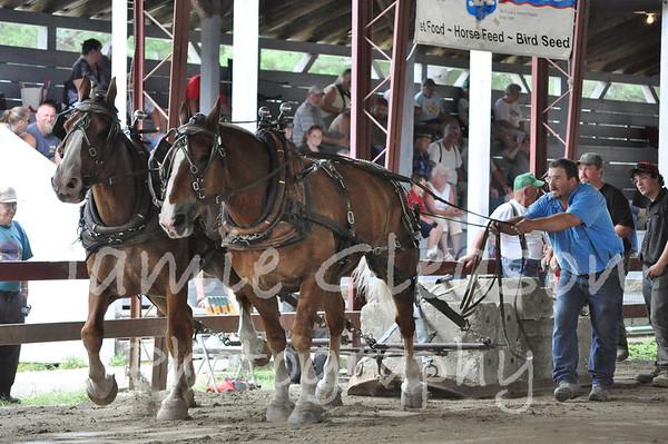 Horse Pulling