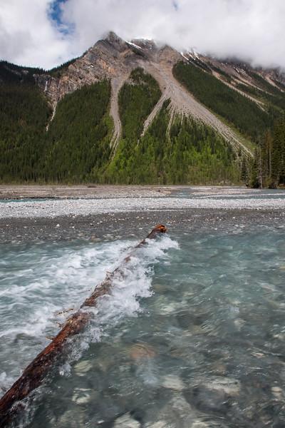 Berg Lake Trail Mount Robson BC-6.jpg