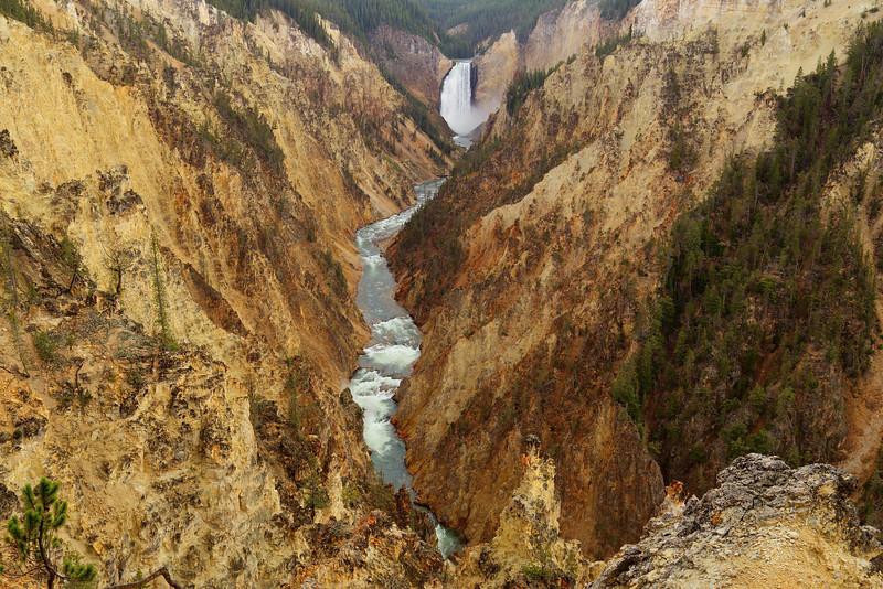 Yellowstone 080.JPG