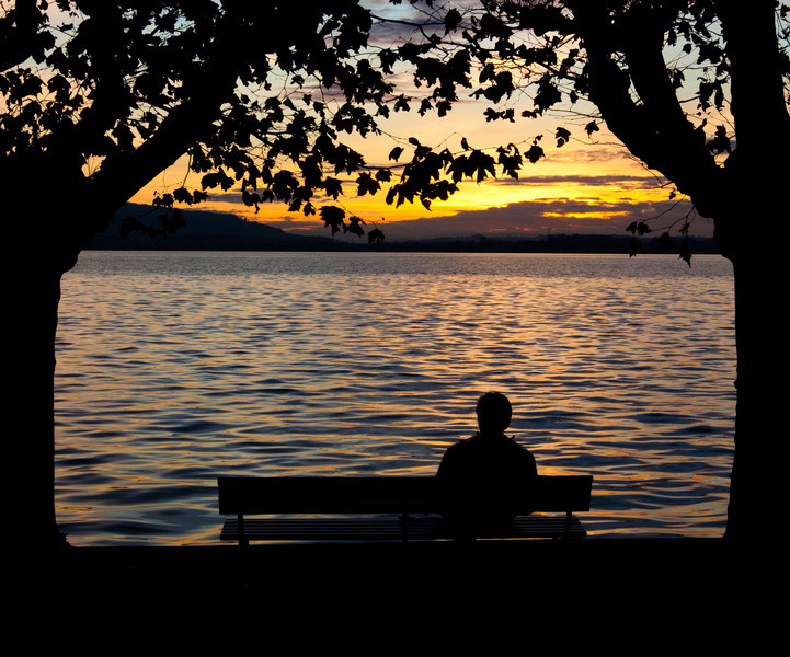 Silhouetted man on bench, flanked by two trees