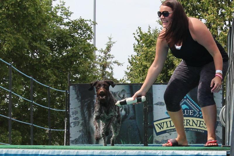 2015.8.6 Winnebago County Fair Dock Dogs (60).JPG