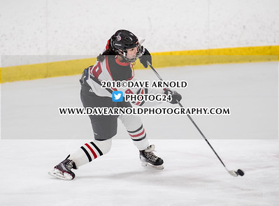 1/30/2018 - Girls Varsity Hockey - Melrose vs Winchester