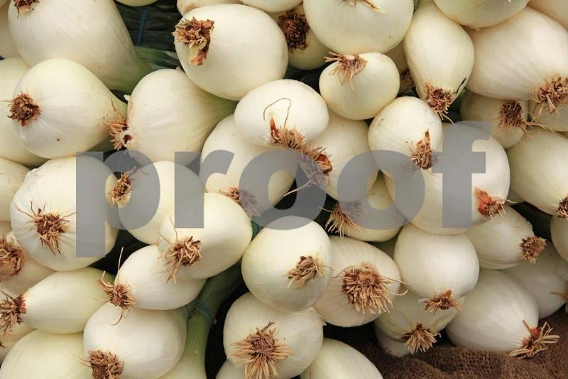 Onions 8123.jpg