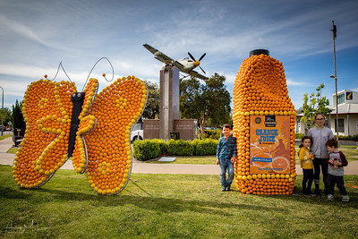 2019 Citrus Sculptures