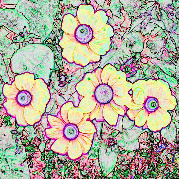 Park Flowers~0215-2ges.