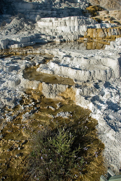 Devil's Thumb, Mammoth Hot Springs, Yellowstone National Park