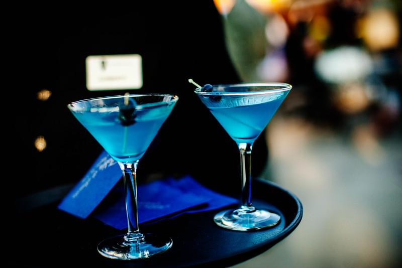 Brandon & Alshey _Cocktail Hour  (105).jpg