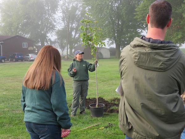 Eddyville tree planting