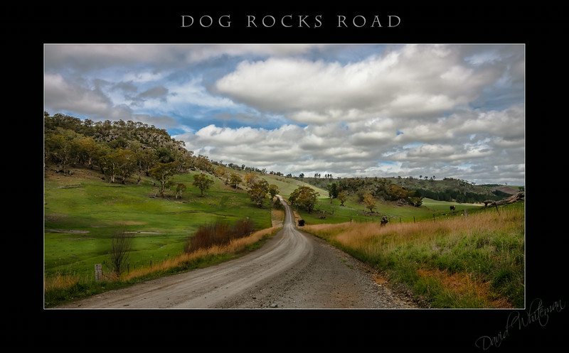Dog Rocks Road