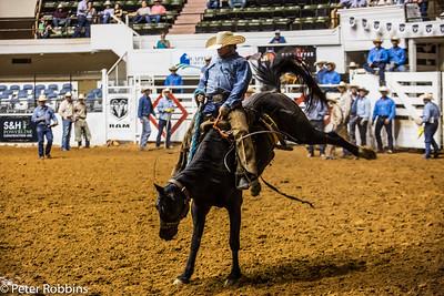 50K Rodeo 2016