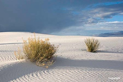 White Sands NP  NM