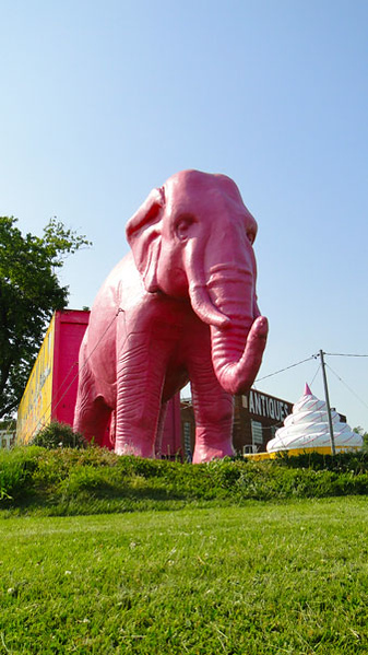Pink-Elephant-2.jpg