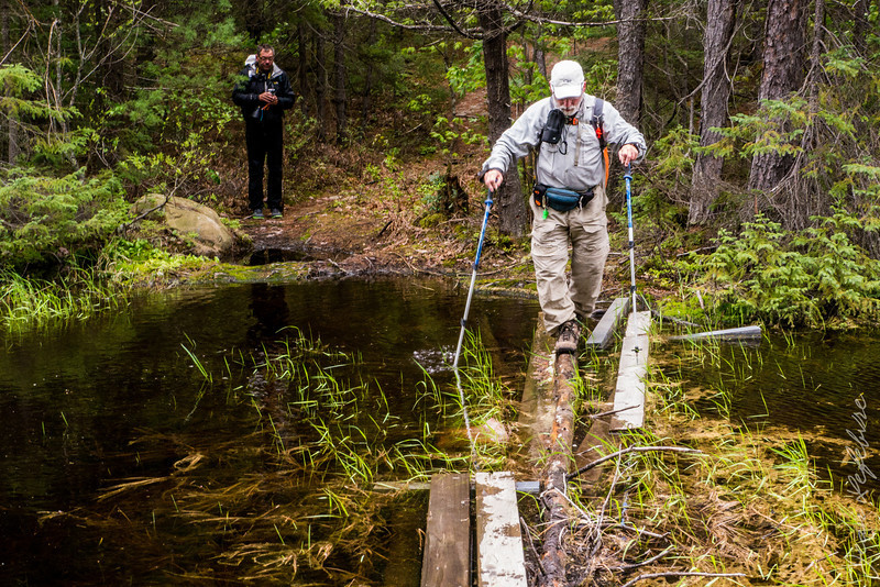 Day 3 of our Temagami Canoe trip we conquered Maple Mountain. It was a bit swampy ...