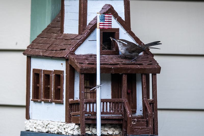 Birdhouse-1.jpg