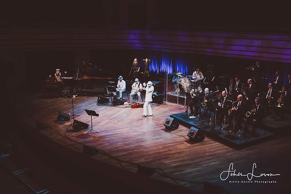 Pannonia Allstars Ska Orchestra - MÜPA - 2018.10.31